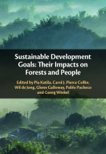 The Sustainable Development Goals: Their impact on forests and people